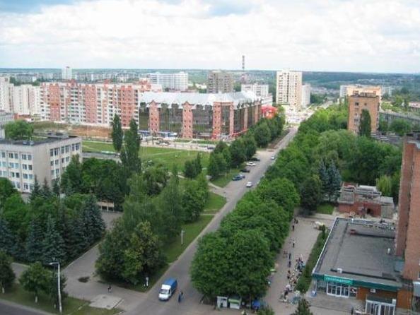 Курская область, е 704 оа 46 - маз-104021